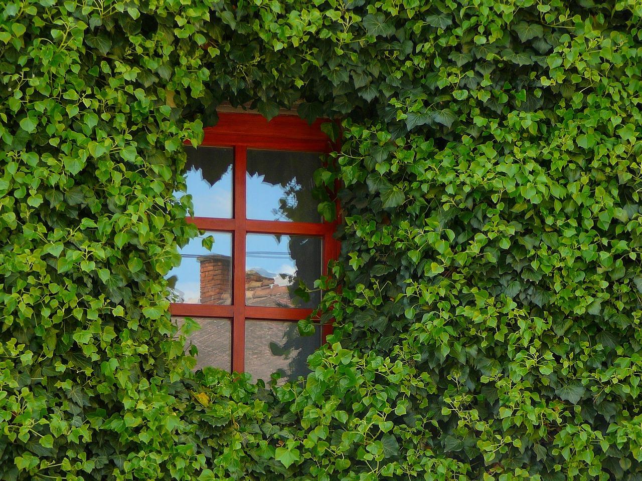 Quel danger représente une fenêtre hors d'état ?